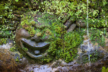 Sculpture Of Happy Face With M...
