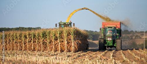 Zdjęcie XXL Rolnictwo we Francji
