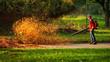 canvas print picture - Herbstlaub wird von einem Laubbläser aufgewirbelt und leuchtet im Sonnenlicht