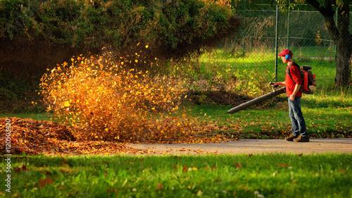 Herbstlaub wird von einem Laubbläser aufgewirbelt und leuchtet im Sonnenlicht