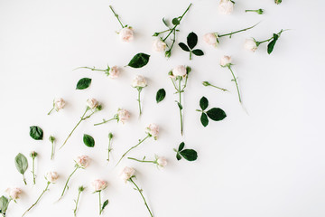 Roses on white background. Flat lay, top view