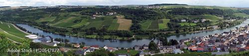 Fototapeta View of Mosel valley obraz na płótnie