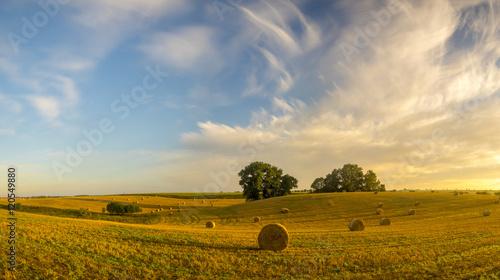 Foto auf Gartenposter Landschappen field after the harvest