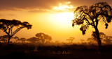 Fototapeta Sawanna - Typical african sunset with acacia trees in Masai Mara, Kenya