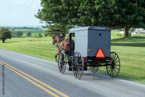 Valokuvatapetti wagon buggy in lancaster pennsylvania amish country