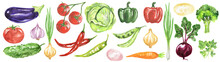 Watercolor Vegetables Set. Fre...