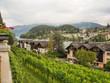 Viñas a orillas del lago Thunersee en Suiza OLYMPUS DIGITAL CAMERA