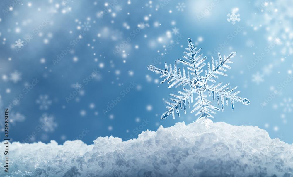 Fototapeta Macro Snowflake and Fallen Defocused Snowflakes