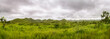 Panorama of african hills in Congo, Mountain of the Moon.