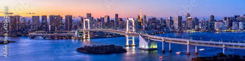 Photo Rainbow Bridge Panorama in Tokyo, Japan
