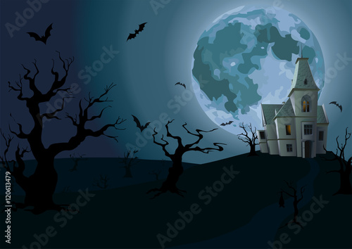 Halloween night: full moon, beautiful castle or chateau with lig Poster