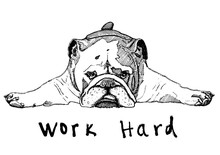 Dog Working Hard