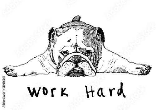 Obraz Dog working hard - fototapety do salonu