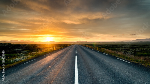 Garden Poster Brown Highway to nowhere