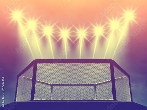 Fotografie, Obraz  MMA fight cage and floodlights , MMA arena