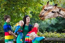 Mother And Kids Feeding Giraff...