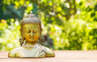 Buddha statue on natural blur green background. Spa concept. Calmness and tranquility. Copy space. Statuette of brass.