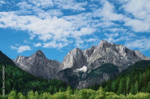 Fototapeta View of the Julian Alps from Kranjska Gora in Slovenia obraz