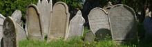 Jewish Cemetery Tombstone Pano...
