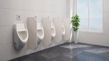Geputzte Urinale In Einer öffentlichen Toilette