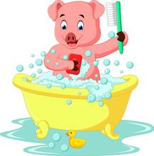 Cute Pig Bathing Time