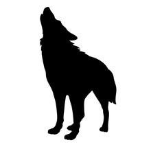 Adult Wolf Vector Illustration Black Silhouette