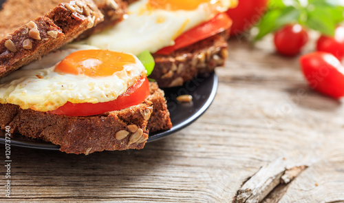 Foto op Plexiglas Gebakken Eieren Fried egg and tomato sandwich
