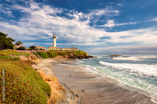 Garden Poster California beach with Lighthouse. Pigeon Point Lighthouse.