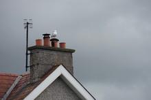 Schornstein Auf Dem Dach Vor G...