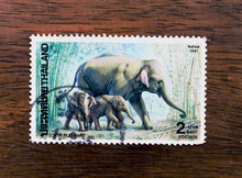THAILAND - CIRCA 1991 A Stamp ...