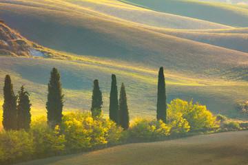 Fototapeta Jesień Autumn Tuscany landscape - hills, trees and fields