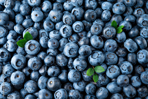 Blueberry. Fresh organic berries macro. Fruit background Wallpaper Mural