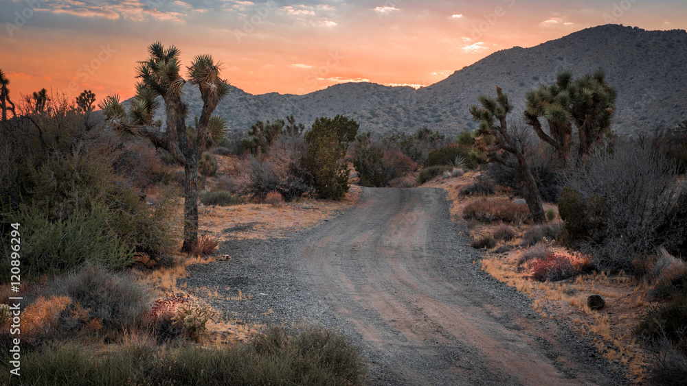Sunset on the Mohave Desert landscape in Yucca Valley, California