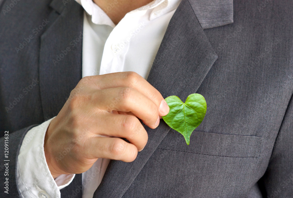 Fototapeta Businessman holding a green heart leaf / Business with corporate social responsibility and environmental concern