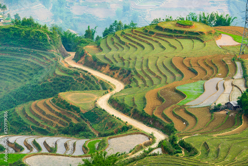 Fotoposter Rijstvelden Beautiful terraced rice field in Lao cai province in Vietnam