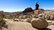 Young Man Standing On Round Rock Viewing Mohave Desert In Joshua National Park, California.