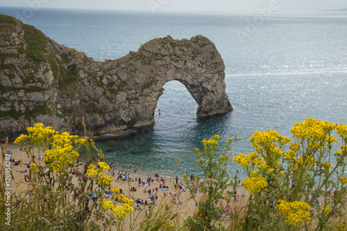 Photo  Durdle Door with yellow flowers
