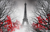 Fototapeta Eiffel Tower - Eiffel Tower in Paris - autumn picture