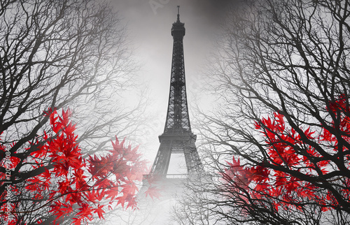 Ingelijste posters Eiffeltoren Eiffel Tower in Paris - autumn picture