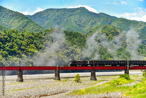 Fototapeta 山間部を走る、大井川鉄道の機関車