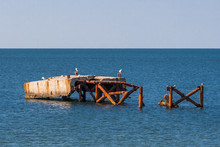 Landscape, Sea Gulls Sitting On An Old, Abandoned Pier.