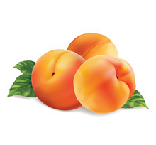 Three Peach Fruit With Leaves ...