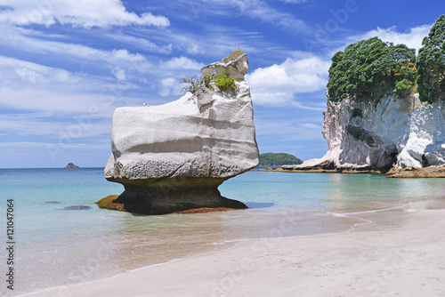 Foto op Plexiglas Cathedral Cove Cathedral Cove beach on Coromandel Peninsula, North Island of New Zealand.