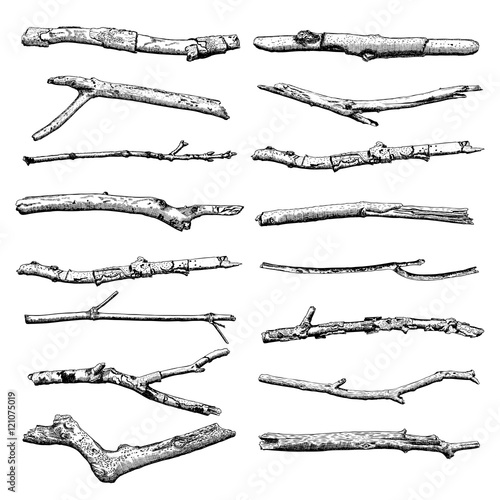 Set of Driftwood, ground floor hand drawn ink rustic design elements collection Canvas Print
