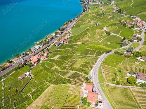 Keuken foto achterwand Olijf Aerial view of Vineyards in Lavaux region - Terrasses de Lavaux