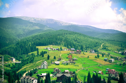 Poster Lime groen Summer landscape in the Carpathian mountains