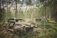 Forest Car Cemetery