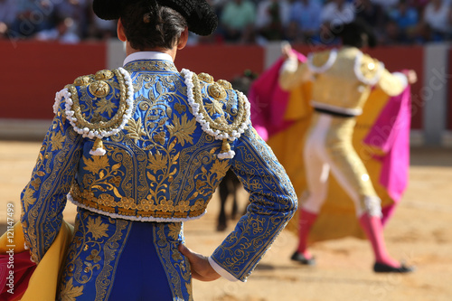 Garden Poster Bullfighting Torero
