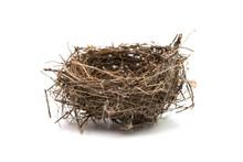 Bird's Nest Isolated