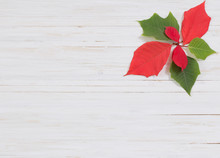 Christmas Background Composed Of Wood Planks And Poinsettia